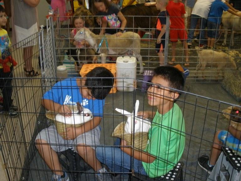 Petting Zoo 2017 009.JPG